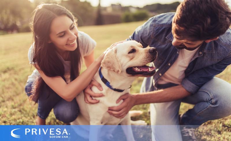 Protege a tu mascota, con un seguro podrías conseguir un ahorro importante, así cuidas de él y de tus finanzas personales o familiares.
